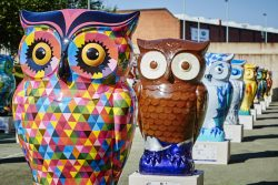 BIGHOOT_FORT_0026
